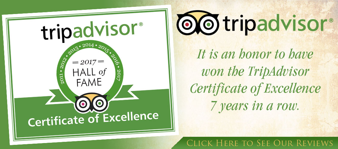 It is an honor to have won the TripAdvisor Certificate of Excellence 7 years in a row